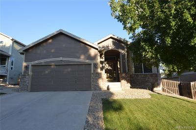 Arvada Single Family Home Active: 7130 Ulysses Street