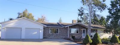 Pierce Single Family Home Active: 301 East Mountain Avenue