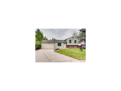 Centennial Single Family Home Under Contract: 17696 East Progress Drive