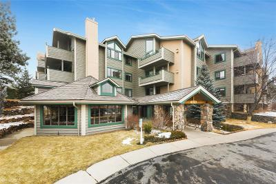 Evergreen Condo/Townhouse Sold: 31719 Rocky Village Drive #213