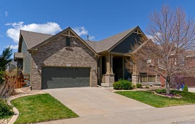 Littleton Single Family Home Under Contract: 8461 Liverpool Circle