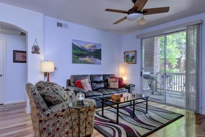 Littleton Condo/Townhouse Active: 1651 West Canal Circle #617