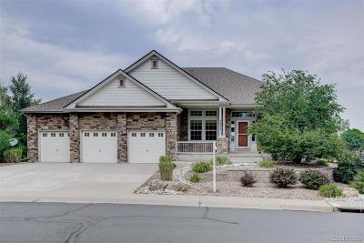 Castle Rock Single Family Home Active: 3985 Elk Run Drive