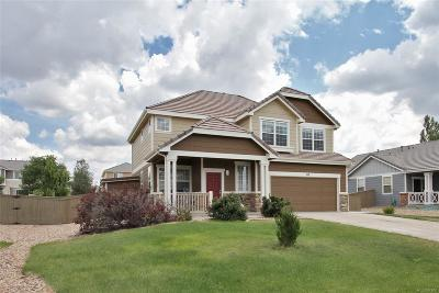Castle Rock CO Single Family Home Active: $389,000