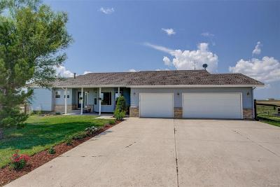 Elbert County Single Family Home Active: 29431 Clear View Circle