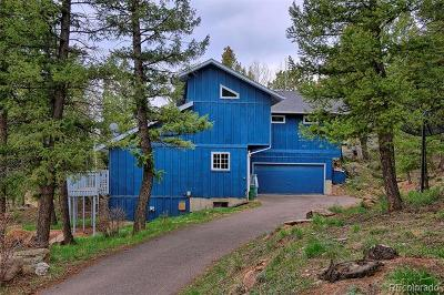 Conifer Single Family Home Active: 12085 Bear Park Road