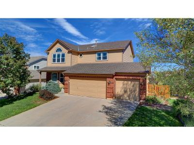 Colorado Springs Single Family Home Under Contract: 6167 Treeledge Drive