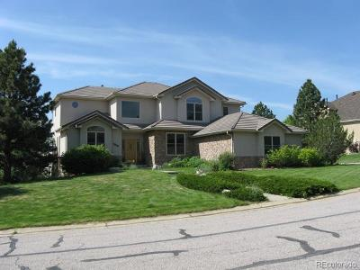 Douglas County Single Family Home Active: 850 Shady Oak Lane