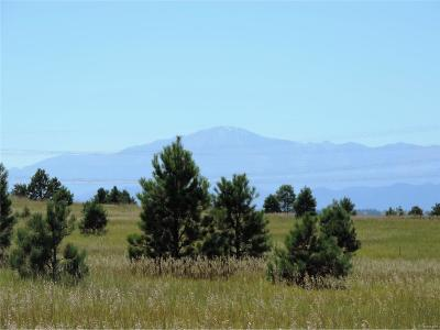 Residential Lots & Land Sold: County Road 98