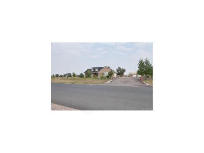 Adams County Single Family Home Under Contract: 3970 Burton Street