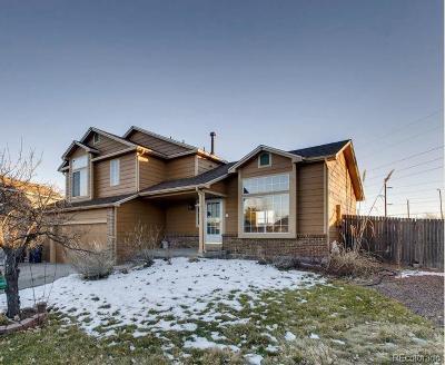 Castle Rock Single Family Home Active: 3968 Ashcroft Avenue