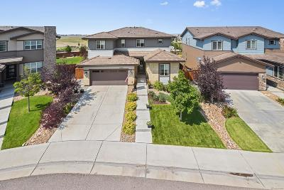 Douglas County Single Family Home Active: 10887 Pastel Point