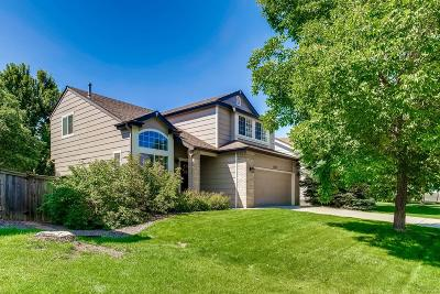 Parker Single Family Home Active: 16110 Hedgeway Drive