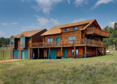 Park County Single Family Home Active: 455 Castle Mountain Pass