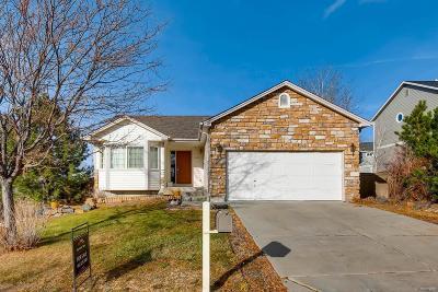 Douglas County Single Family Home Active: 5971 Randolph Avenue