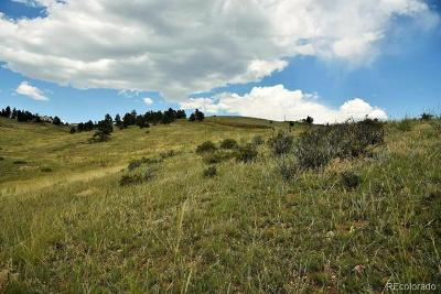 Golden Residential Lots & Land Active: 455 Mt. Evans Vista Road