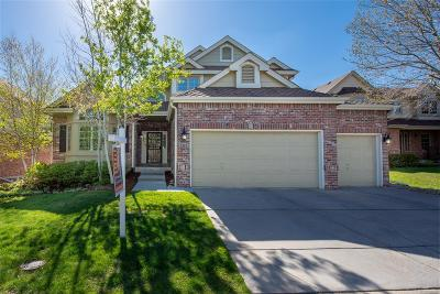 Englewood Single Family Home Under Contract: 6223 South Iola Court