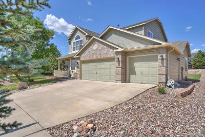 Colorado Springs Single Family Home Active: 1924 Coldstone Way