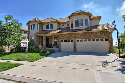 Arvada Single Family Home Under Contract: 6700 Violet Way