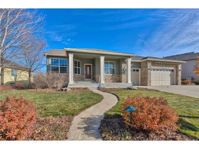 Longmont Single Family Home Active: 11752 Ashton Road