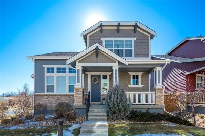 Single Family Home Under Contract: 412 Dallas Street