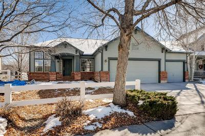 Longmont Single Family Home Active: 810 Bittersweet Lane