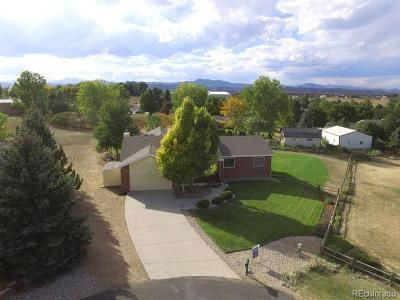 Berthoud Single Family Home Active: 613 Evita Court