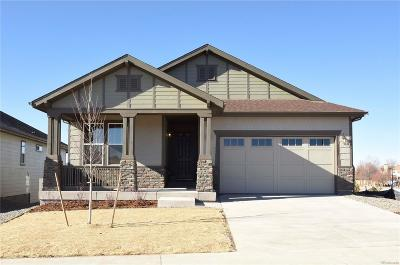 Castle Rock Single Family Home Active: 4186 Forever Circle