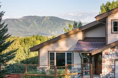 Steamboat Springs Single Family Home Active: 40515 Anchor Way