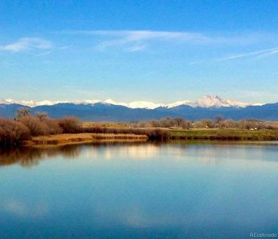 Longmont Residential Lots & Land Active: 5799 Pelican Shores Court