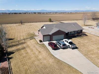 Longmont Single Family Home Active: 1842 Meadow Vale Road