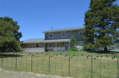 Douglas County Single Family Home Active: 11205 East Folsom Point Lane