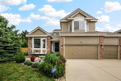 Superior Single Family Home Under Contract: 321 Amethyst Way