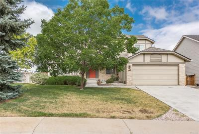 Highlands Ranch Single Family Home Under Contract: 9051 Kenwood Court