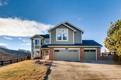 Castle Rock Single Family Home Active: 1076 Switch Grass Drive