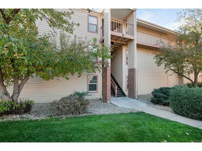Denver Condo/Townhouse Active: 3141 South Tamarac Drive #E105