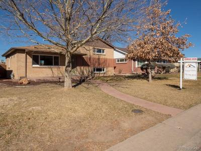Denver Single Family Home Under Contract: 3561 Jasmine Street