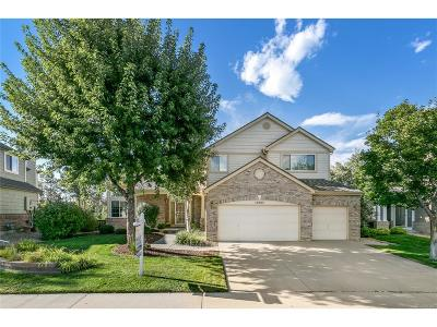 Parker Single Family Home Under Contract: 16283 Creekview Drive