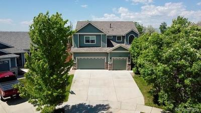 Erie Single Family Home Active: 1110 Sunset Way