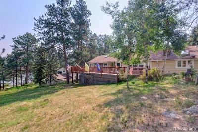 Evergreen Single Family Home Active: 4732 South Cedar Road
