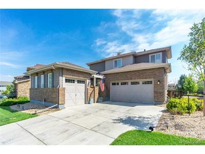 Southshore Single Family Home Under Contract: 6766 South Quantock Way