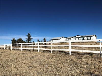El Paso County Single Family Home Active: 33975 State Highway 94