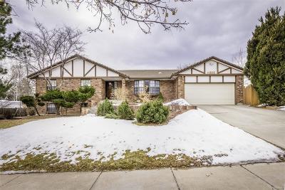 Denver Single Family Home Active: 4802 West Union Avenue