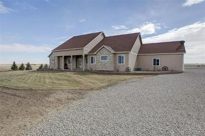 Keenesburg Single Family Home Active: 31440 County Road 18