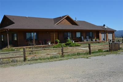 Nathrop Single Family Home Active: 13180 County Road 280