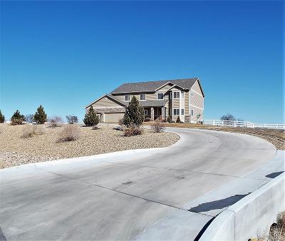 Greeley Single Family Home Active: 32708 Bravo Point Way