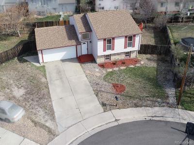 Bennett Single Family Home Under Contract: 883 Centennial Way