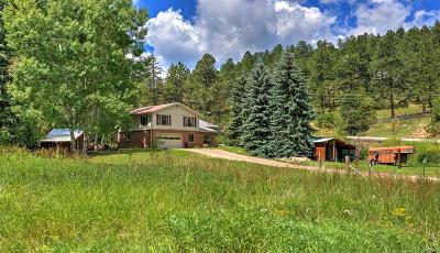 Littleton Single Family Home Active: 12253 Kuehster Road