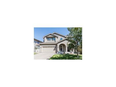 Arapahoe County Single Family Home Active: 1563 South De Gaulle Circle