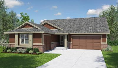 Castle Rock Single Family Home Active: 2348 Purple Finch Court